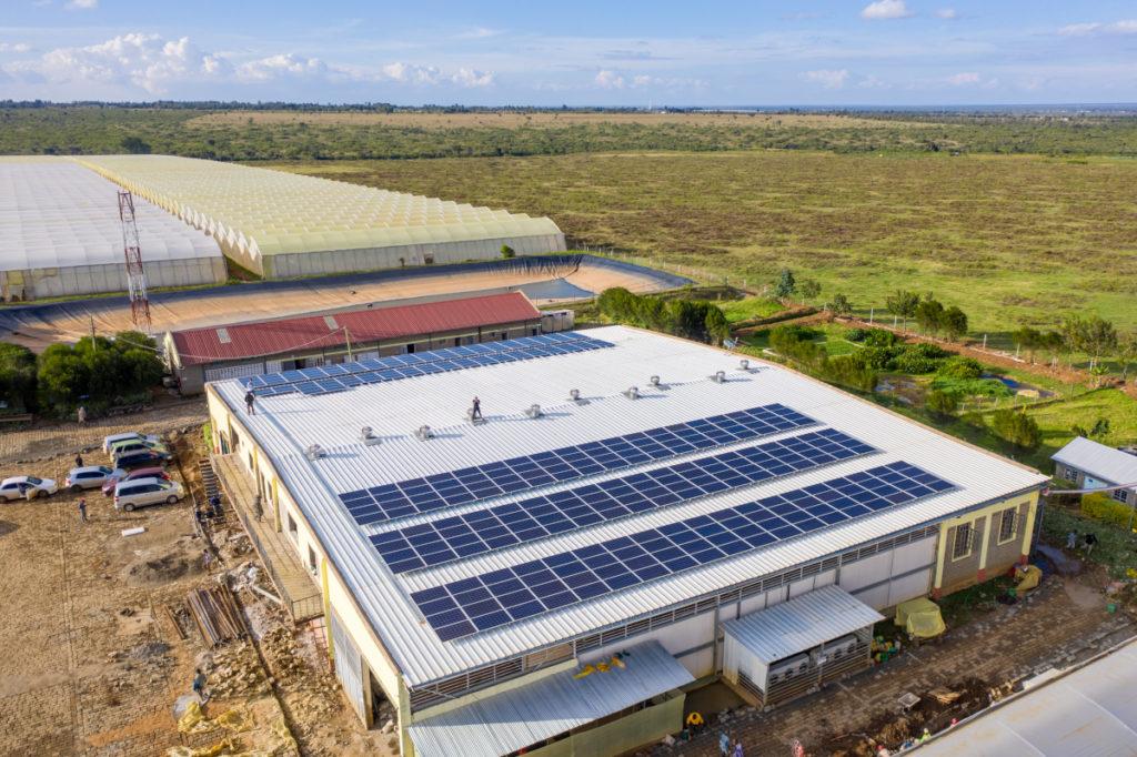 100-kWp-System bei Credible Blooms, Kenia.