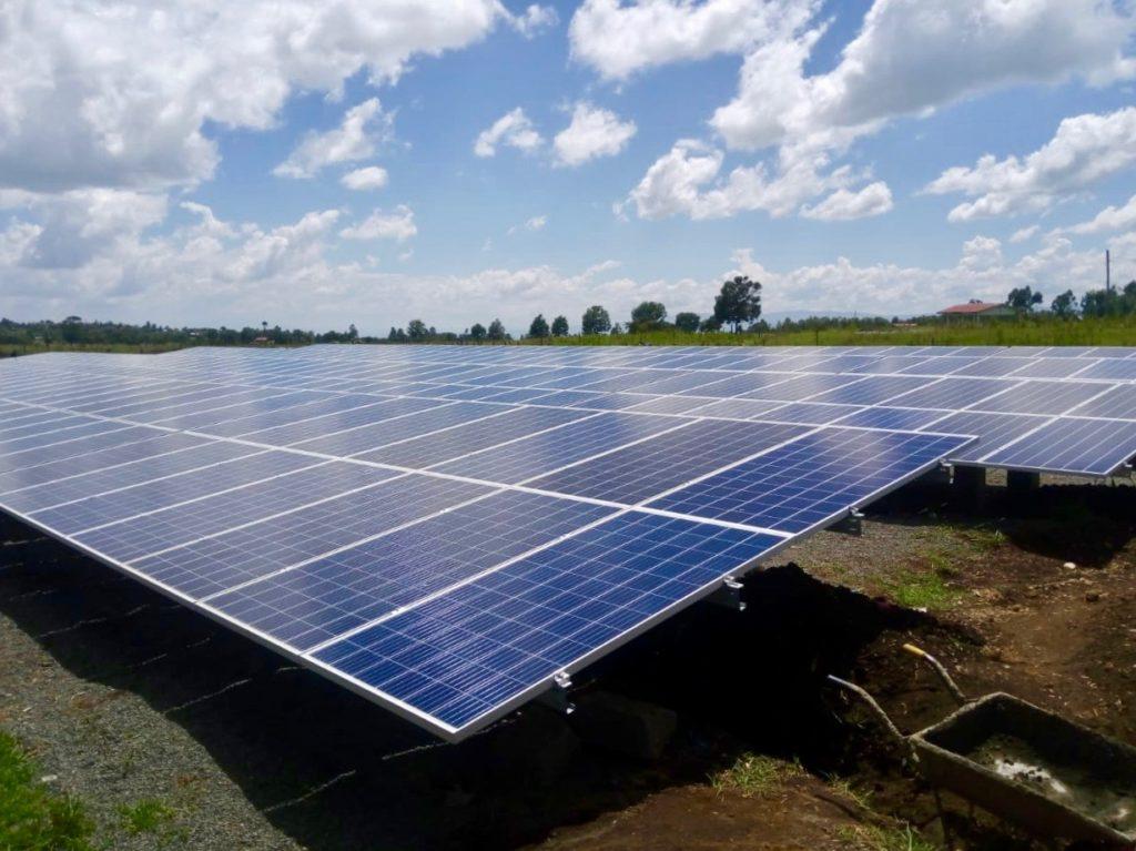 Sistema solar de 110 kWp para el criador de flores United Selections.
