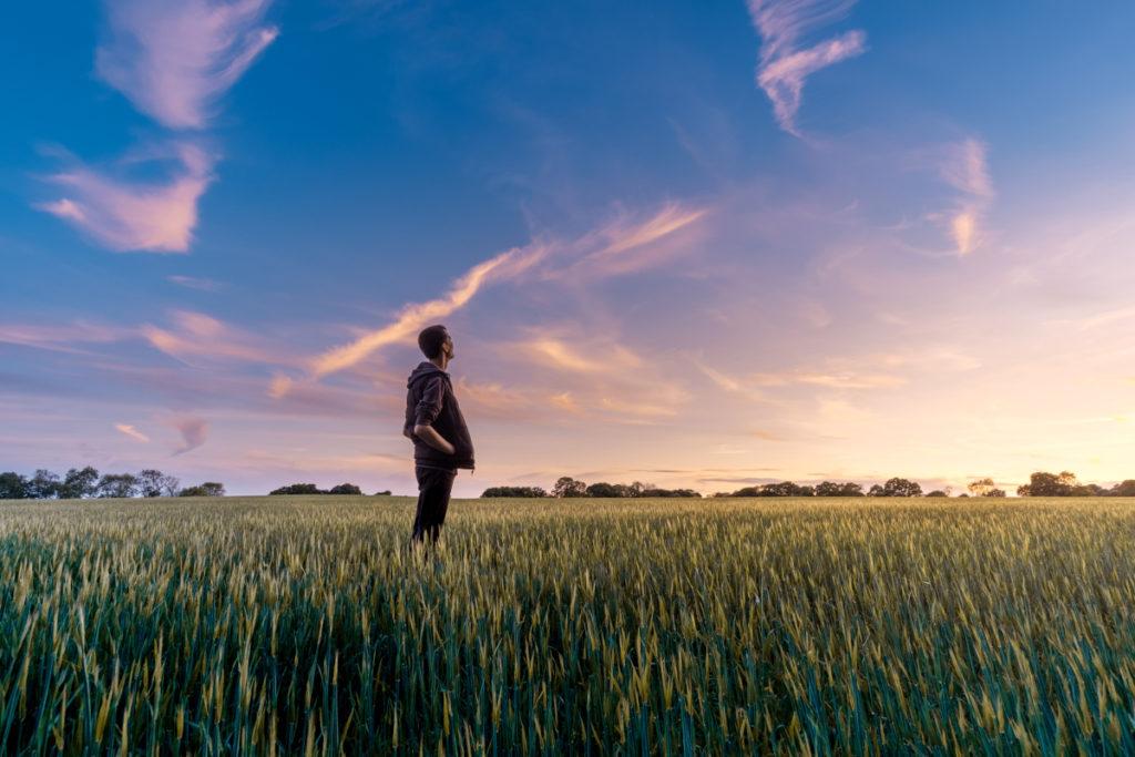 Un hombre en el fileds mirando el cielo del atardecer.