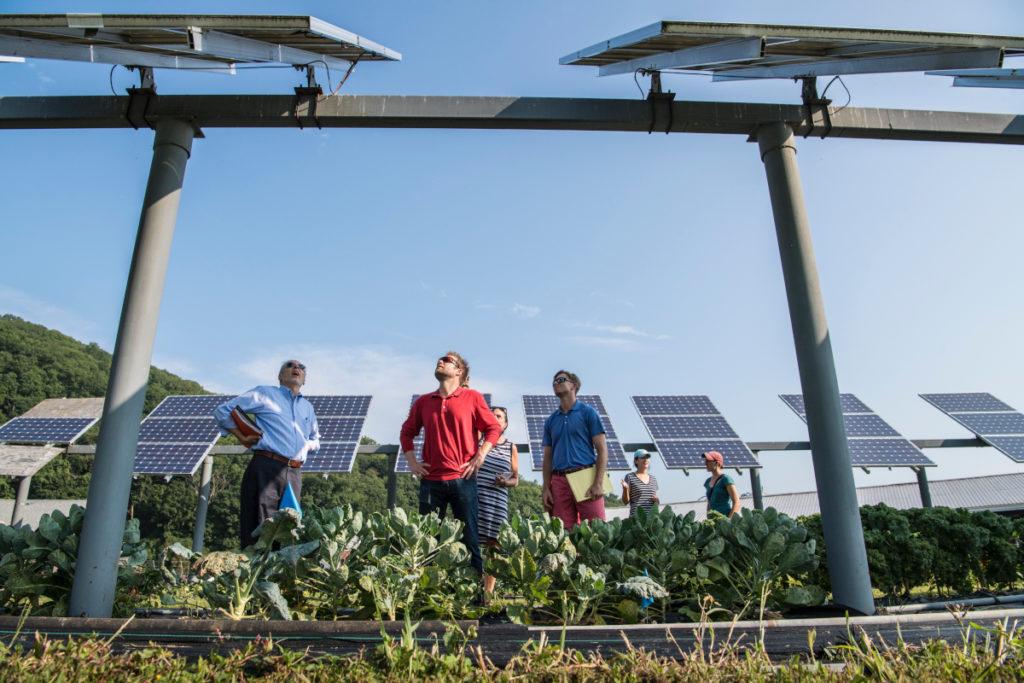 La gente mira los paneles solares en beneficio de la agricultura.