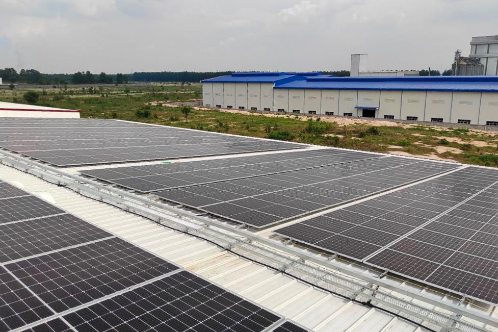 Solarpaneele bei Rega