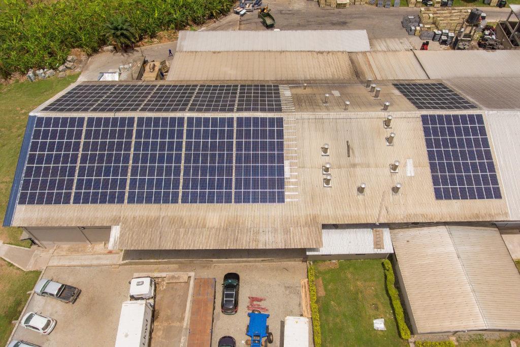 Solar plant at Bomarts Farms