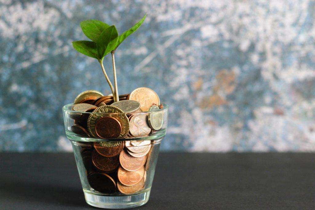 Glas voller Münzen, aus dem eine Pflanze wächst