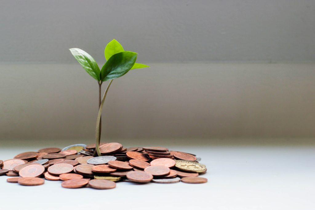 Una pila de monedas con una pequeña planta que crece en ella.